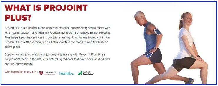 What Is Projoint Plus